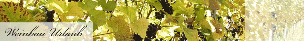 Weinbau Urlaub